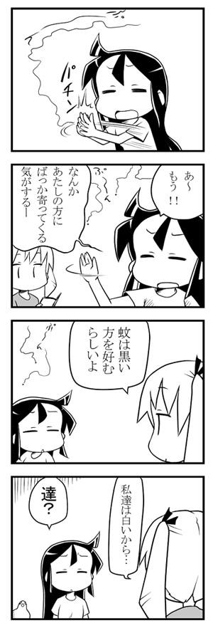 hato_2009naru1.jpg